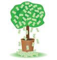 cash tree vector image vector image