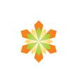 geometry shape flower logo vector image vector image