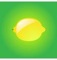 Glossy lemon vector image