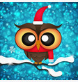 Greeting card with cute owls in Santa hats vector image