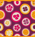 grunge slice fruits seamless pattern vector image vector image