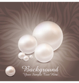 luxurious pearl background vector image vector image