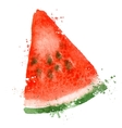 Watermelon logo design template vitamins vector image vector image