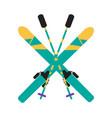 skiing equipment pole set vector image