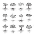 black shape tree with leaves and roots vector image