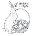 hand drawn rabbit near the vector image vector image