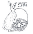 hand drawn rabbit near vector image