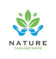 leaf logo design vector image