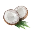 Polygonal coconut with leaf vector image vector image
