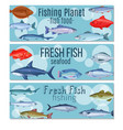 set banners fish vector image vector image