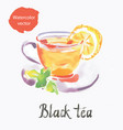 black tea watercolor vector image vector image