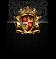 ornamental heraldic shield highly realistic vector image vector image
