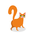 Red cat ass Happy pet Thick Animal back vector image vector image