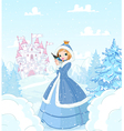 winter princess vector image vector image