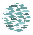 colored silhouettes school of fish a group of vector image