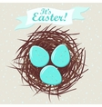 Eggs in nest vector image