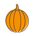 thanksgiving pumpkin dinner decoration celebration vector image