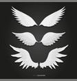 white feather wings set vector image vector image