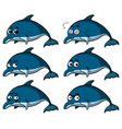 blue dolphins with different emotions vector image vector image