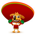 funny cheerful yellow mexican dog in poncho and vector image