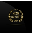 High quality icon vector image vector image