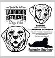 labrador retriever dog - set on white vector image vector image