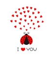 Red flying lady bug insect with hearts Cute vector image vector image