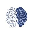 sketch ink human brain hand drawn vector image vector image