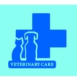 isolated veterinary care blue icon vector image