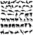 animal wild and pet black silhouette vector image vector image