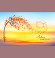 autumn nature background with a tree and a vector image vector image