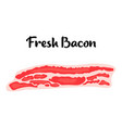 bacon strips in cartoon style meat product design vector image vector image