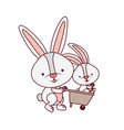 bunnies with wheelbarrow isolated icon vector image