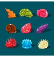 Collection of Colorful Shells vector image vector image