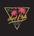 palm beach florida stylish graphic t-shirt vector image