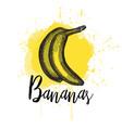a banana hand drawn vector image vector image
