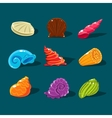 Collection of Colorful Shells vector image