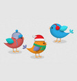 cute birds wintertime 3d style set vector image