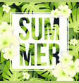 summer sale banner or poster with monstera palm vector image vector image