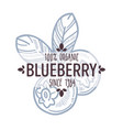 blueberry or bilberry isolated icon with lettering vector image