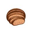 brown bread loaf sketch icon vector image