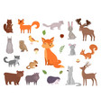 cute wild animals forest animals vector image vector image