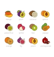 Fruits color icons set vector image