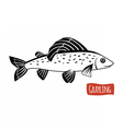 Grayling black and white vector image