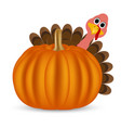 Turkey on Thanksgiving Day vector image vector image