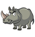 wild rhino with serious face vector image