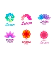 set of abstract floral leaf logos vector image
