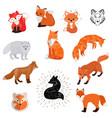 fox cartoon cute of animal vector image