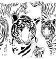 seamless pattern background tiger skins vector image