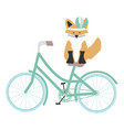 cute fox with feathers hat in bicycle bohemian vector image